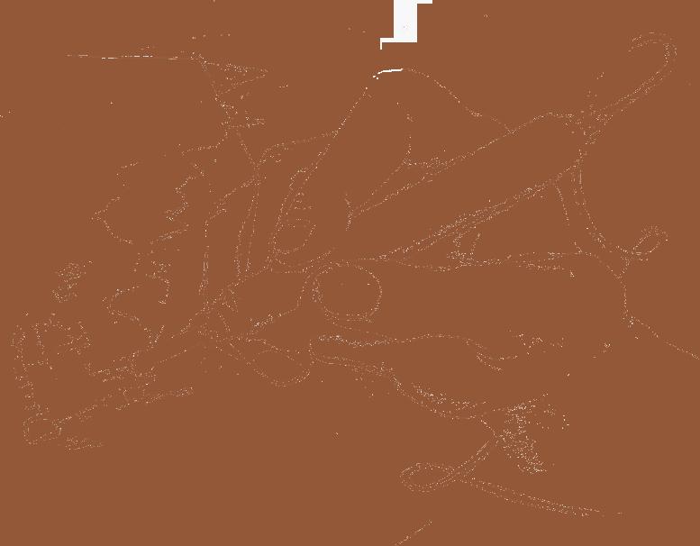 Logo-Pirografia Renzo-Gaioni-artista-artigiano-legno-pirografo-
